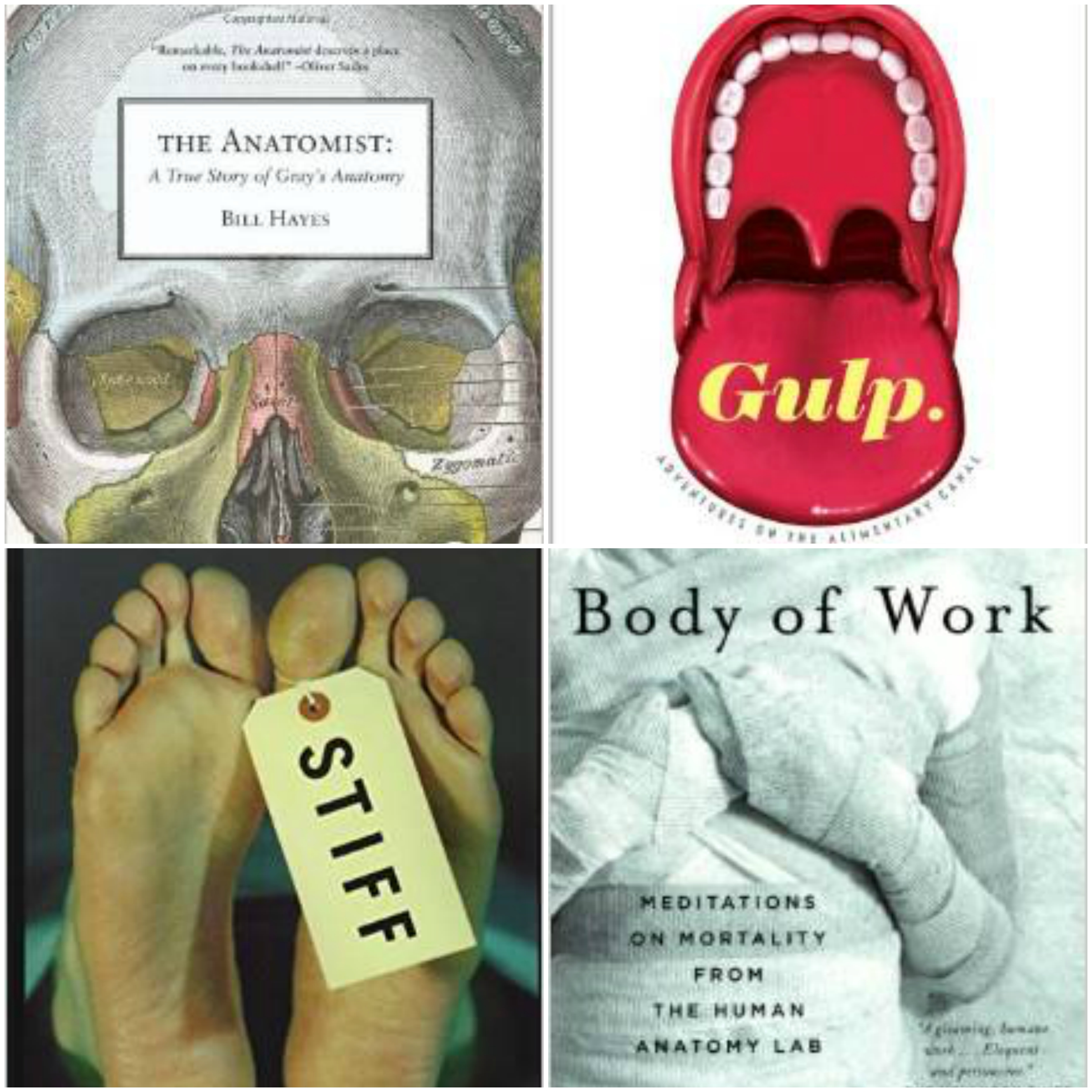 the anatomist a true story of Books by writer / photographer bill hayes, partner of oliver sacks, and author of insomniac city, the anatomist the anatomist: a true story of gray's anatomy.
